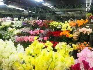 市場より新鮮な切花が、月・水・金で入荷します